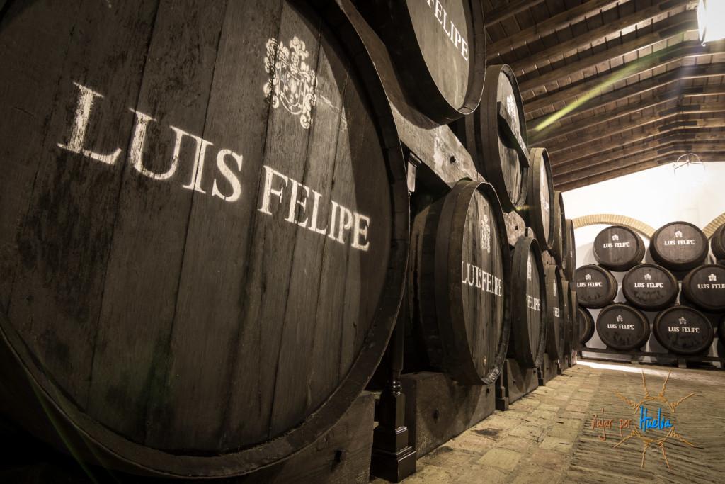 Rubios- Luis Felipe